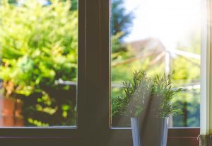 Window to Nature